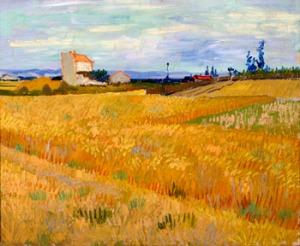 Vincent van Gogh, Champ de blé, juin 1888 Huile sur toile, 50 x 61 cm © Fondation P. et N. de Boer, Amsterdam